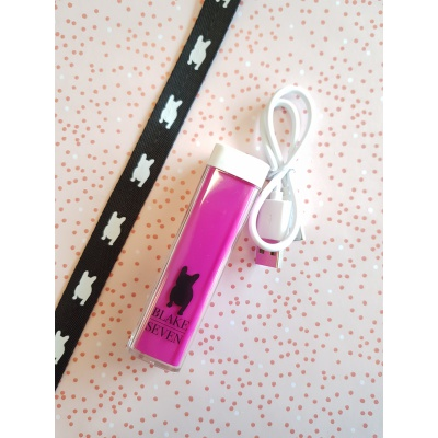 BS POWERBANK